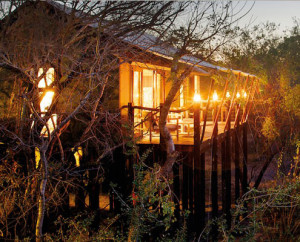 Greater Kruger Treehouse