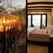 Comparing a Luxury Lodge and Tree-house