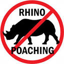 Kruger National Park is under threat of Rhino poaching.