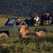 Get free access to Kruger Park and other South African National Parks.